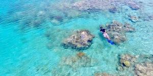 Snorkling di pulau moyo