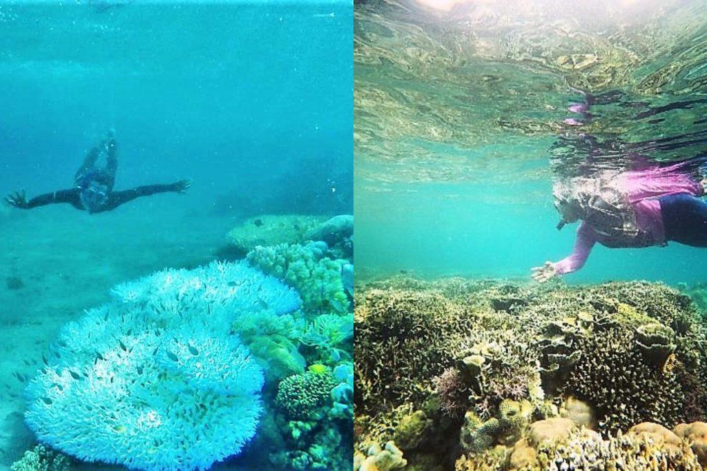 snorkling di pantai Raja sua, Pulau Moyo, Sumber:instagram.com/amenkardian dan